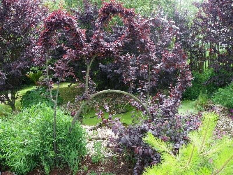 Les rendez vous au jardin le 5 6 et 7 juin 2009 for Rendez vous au jardin