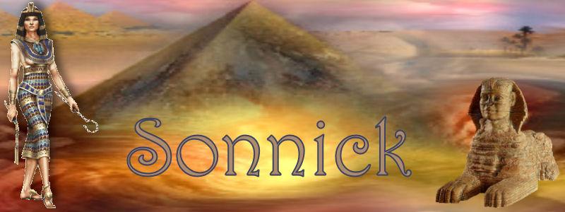 sonnic11.jpg