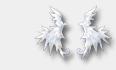 Beaugoss (8)