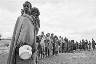 somali10 dans mini actu