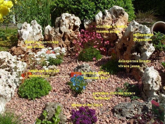 Petite rocaille en cours de r alisation - Image de rocaille ...