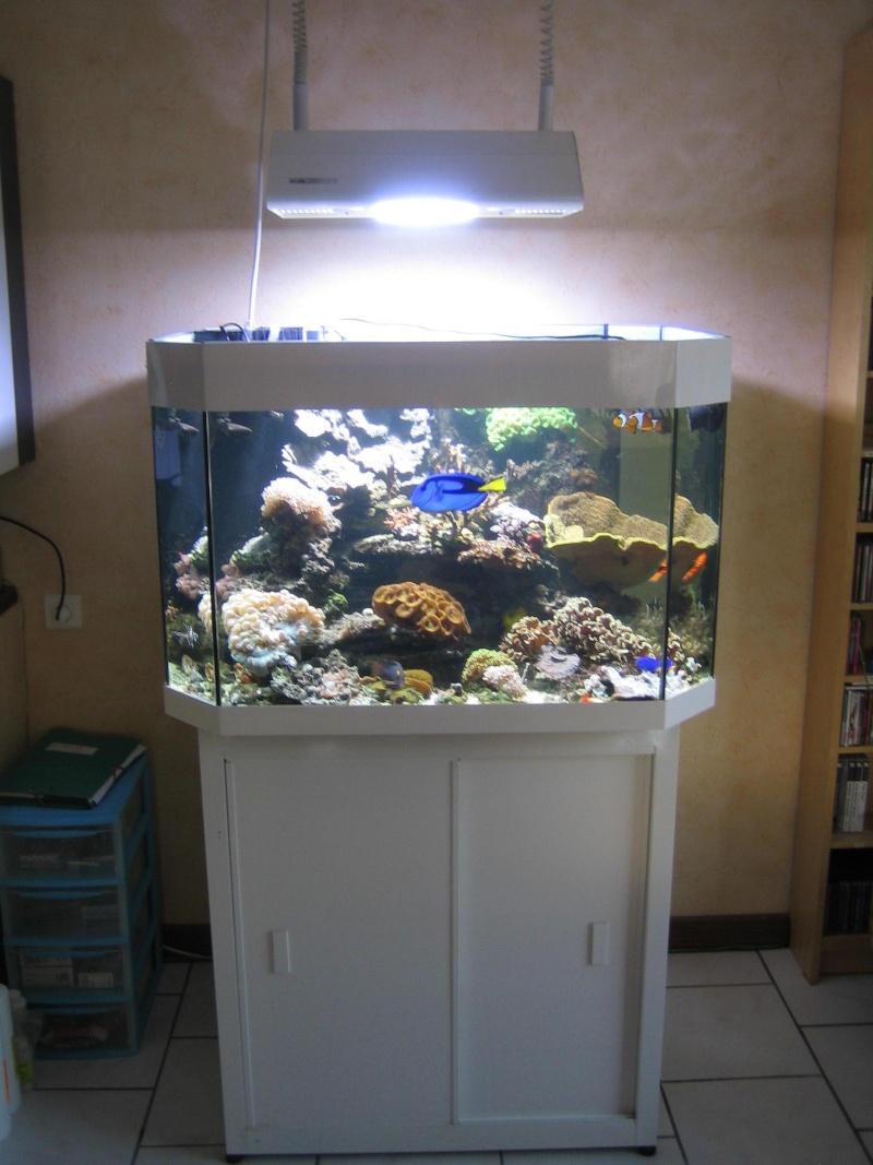 aquarium 300l a vendre