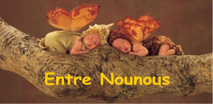 Entre Nounous