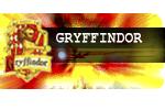 1. Sınıf Gryffindor Öğrencisi