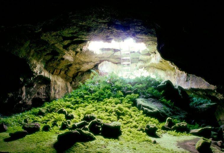 Foro de La Cueva